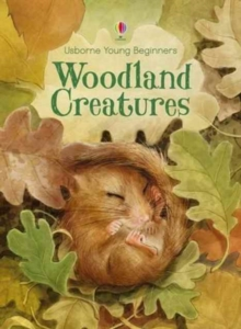 Young Beginners Woodland Creatures, Hardback Book