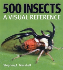 500 Insects : A Visual Reference, Hardback Book
