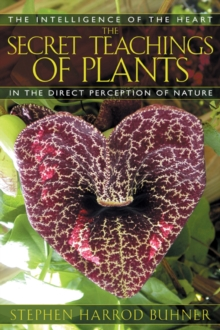 The Secret Teachings of Plants : The Intelligence of the Heart in Direct Perception to Nature, Paperback Book