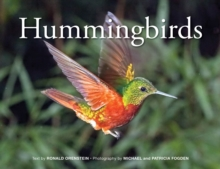 Hummingbirds, Hardback Book
