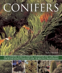 Conifers : An Illustrated Guide to Varities, Cultivation and Care, with Step-by-step Instructions and Over 160 Beautiful Photographs, Paperback Book