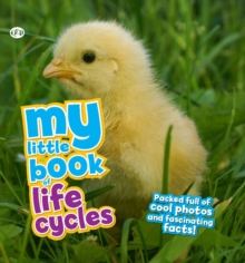My Little Book of Lifecycles, Hardback Book