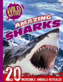 Explore Your World - Amazing Sharks, Paperback Book