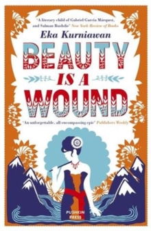 Beauty is a Wound, Paperback Book