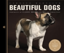 Beautiful Dogs : Portraits of Champion Breeds Preened to Perfection, Paperback Book