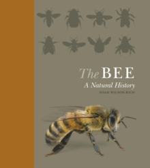 The Bee : A Natural History, Hardback Book