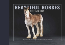Beautiful Horses Postcard Book : 30 Postcards of Champion Breeds to Keep or to Send, Book Book