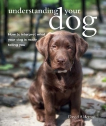 Understanding Your Dog : How to Interpret What Your Dog is Really Telling You, Paperback Book