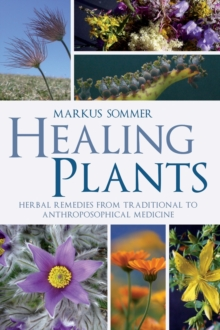 Healing Plants : Herbal Remedies from Traditional to Anthroposophical Medicine, Paperback Book
