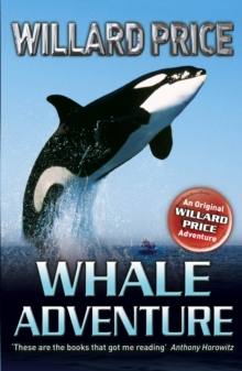 Whale Adventure, Paperback Book