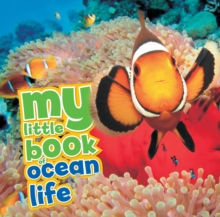 My Little Book of Ocean Life, Hardback Book