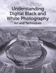 Understanding Digital Black and White Photography : Art and Techniques, Paperback Book