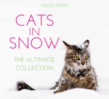 Cats in Snow : The Ultimate Collection, Hardback Book