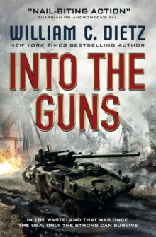 Into the Guns, Paperback Book