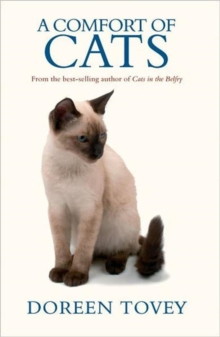 A Comfort of Cats, Paperback Book