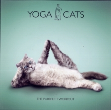 Yoga Cats : The Purrfect Workout, Hardback Book