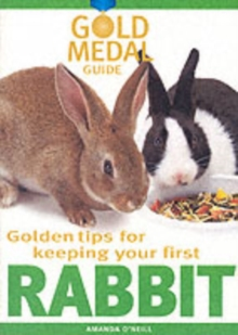 Rabbit, Paperback Book
