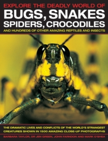 Explore the Deadly World of Bugs, Snakes, Spiders, Crocodiles, Paperback Book