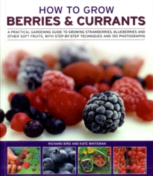 How to Grow Berries and Currants : A Practical Gardening Guide for Great Results, with Step-by-step Techniques and 185 Colour Photographs, Paperback Book