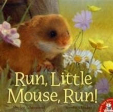 Run, Little Mouse, Run!, Paperback Book