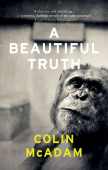 A Beautiful Truth, Paperback Book