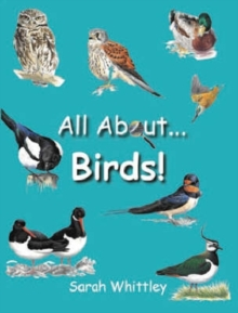 All About Birds, Hardback Book