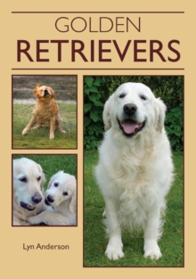 Golden Retrievers, Paperback Book