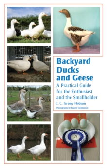 Backyard Ducks and Geese : A Practical Guide for the Enthusiast and the Smallholder, Hardback Book