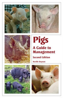 Pigs : A Guide to Management, Paperback Book