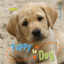Life Cycles: Puppy to Dog, Paperback Book