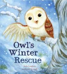 Animal Seasons: Owl's Winter Rescue, Paperback Book