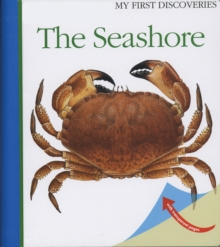 The Seashore, Hardback Book