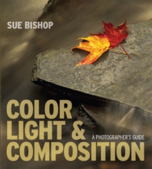Color, Light and Composition : A Photographer's Guide, Paperback Book
