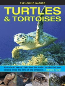 Exploring Nature: Turtles & Tortoises : An in-Depth Look at Chelonians, the Shelled Reptiles That Have Existed Since the Time of Dinosaurs, Hardback Book