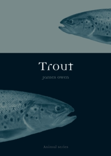 Trout, Paperback Book
