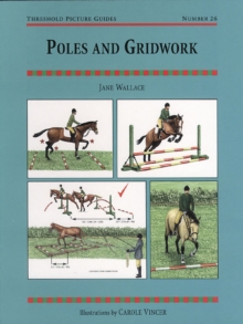 Poles and Gridwork, Paperback Book