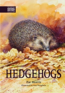 Hedgehogs, Hardback Book