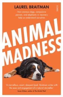 Animal Madness : how anxious dogs, compulsive parrots, and elephants in recovery help us understand ourselves, Paperback Book