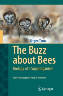 The Buzz About Bees : Biology of a Superorganism, Hardback Book