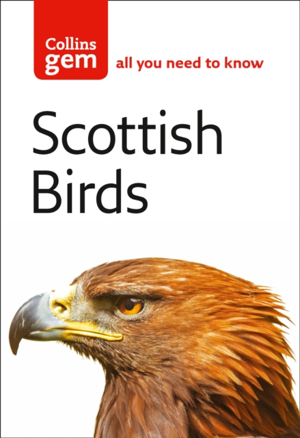 Cover for: Scottish Birds