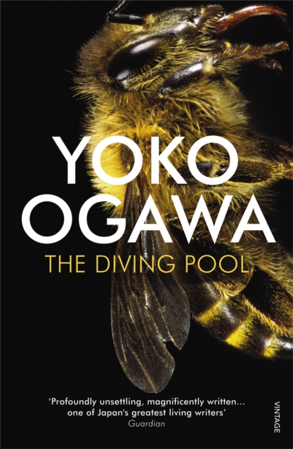 Cover for: The Diving Pool