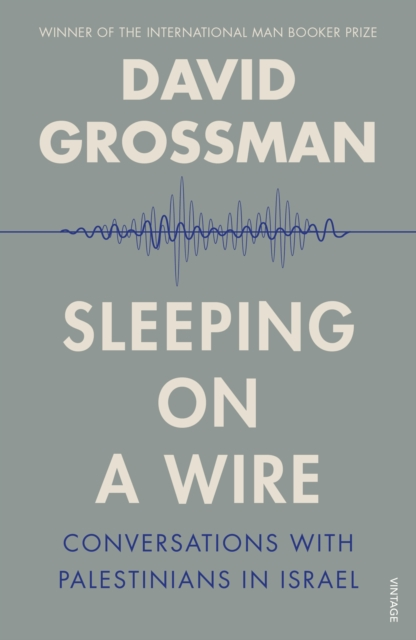 Cover for: Sleeping On A Wire : Conversations with Palestinians in Israel