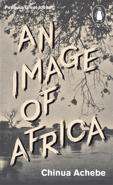 Cover for: An Image of Africa