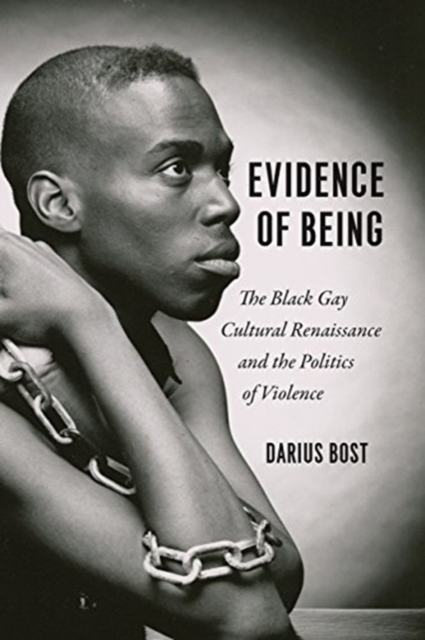 Image for Evidence of Being : The Black Gay Cultural Renaissance and the Politics of Violence
