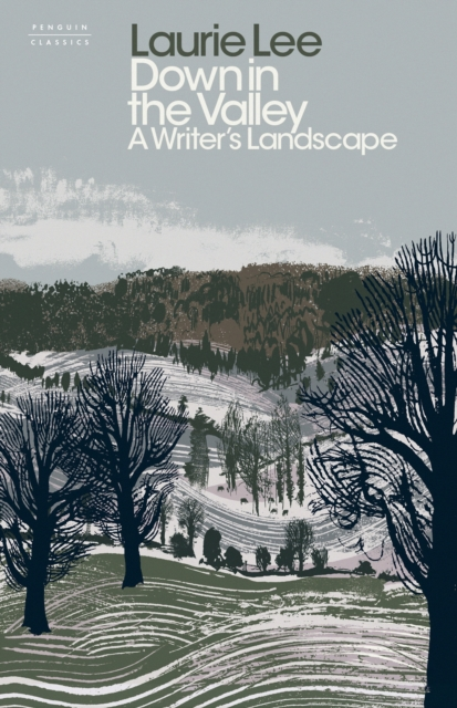 Cover for: Down in the Valley : A Writer's Landscape