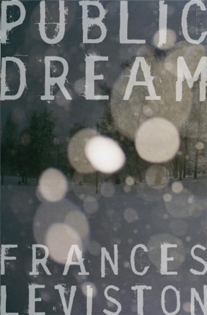 Cover for: Public Dream