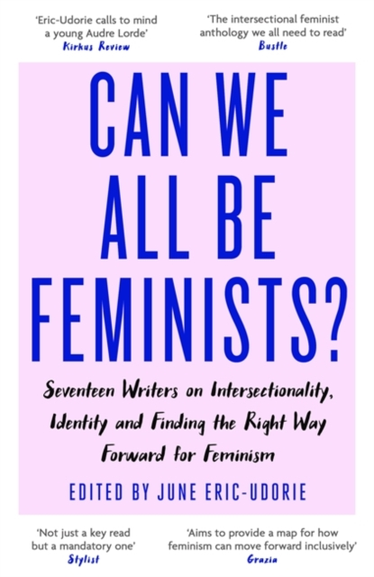Cover for: Can We All Be Feminists? : Seventeen writers on intersectionality, identity and finding the right way forward for feminism