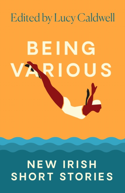 Cover for: Being Various : New Irish Short Stories