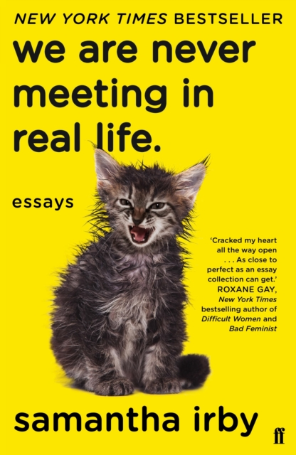 Cover for: We Are Never Meeting in Real Life