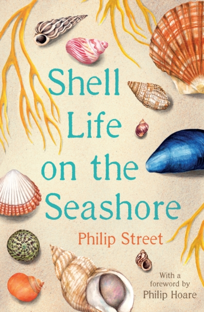 Cover for: Shell Life on the Seashore